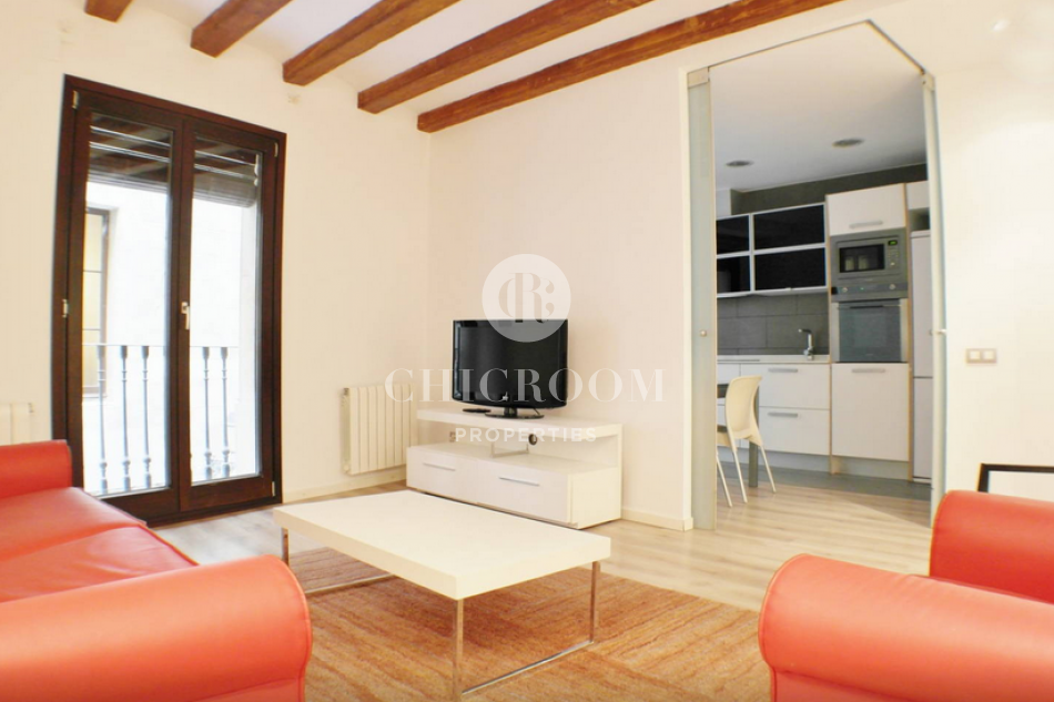 furnished 2 bedroom apartment for rent with wifi in the